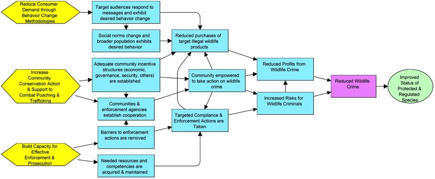 CWT Diagram